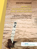 Executive Summary - Impacts, Vulnerabilities and Adaptation