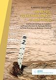 Sumário Executivo - Impactos, Vulnerabilidade e Adaptação